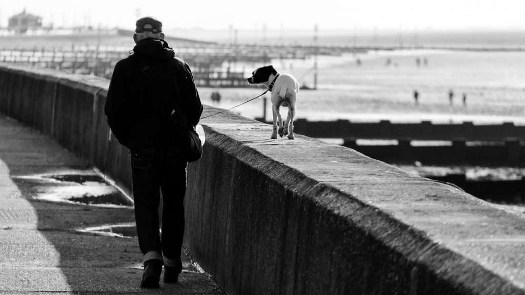 walking with man's best friend